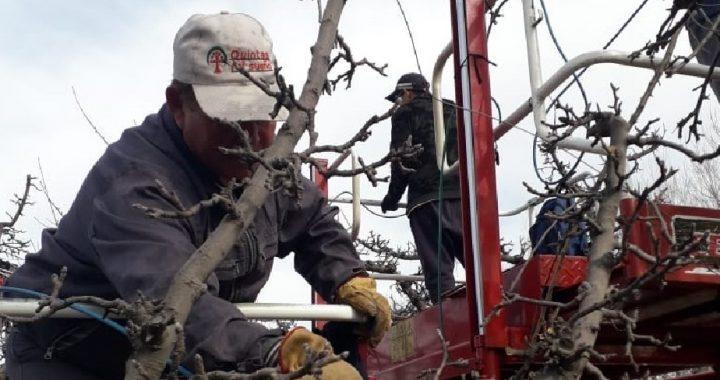 Así será el protocolo que Río Negro estableció para trabajadores migrantes
