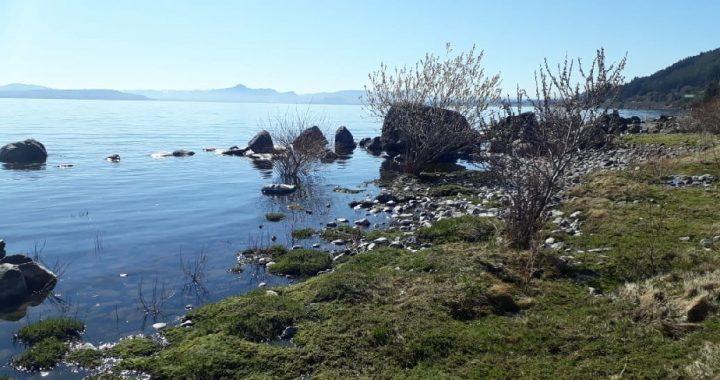 El DPA realiza inspecciones sobre el Lago Nahuel Huapi