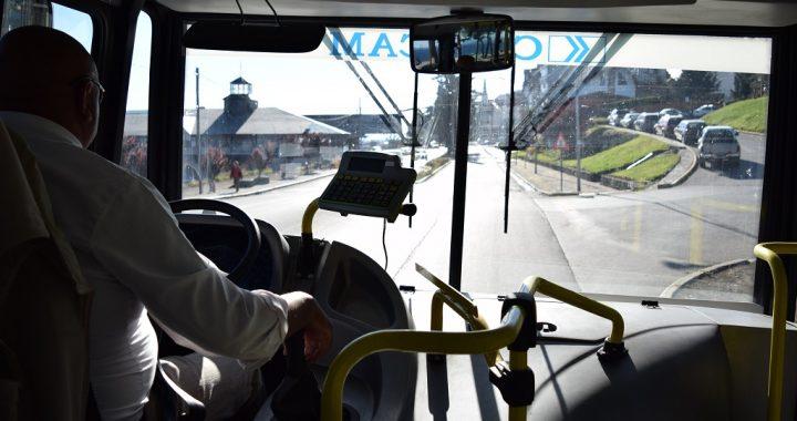 Bariloche: Se realizó audiencia en el marco del amparo por el transporte público