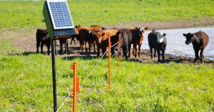 Licitan la compra de boyeros solares a través del PERMER para Río Negro