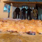 Valle Azul: la Brigada Rural decomisó 900 kilos de carne y retuvo un camión que transportaba caballos de manera ilegal