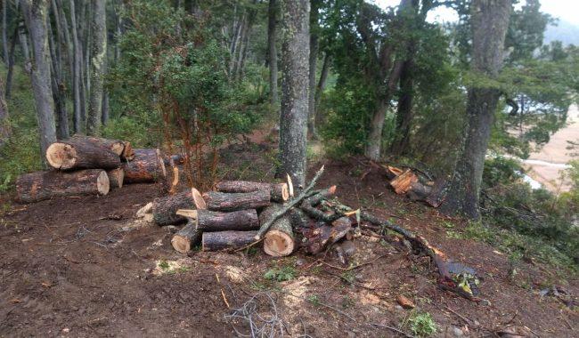 Vecinos de las Reservas Naturales en alerta