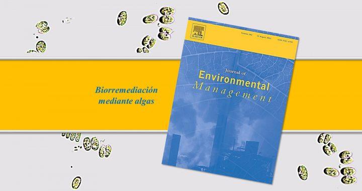 Avances científicos en el empleo de microalgas para la biorremediación de sitios contaminados por metales pesados